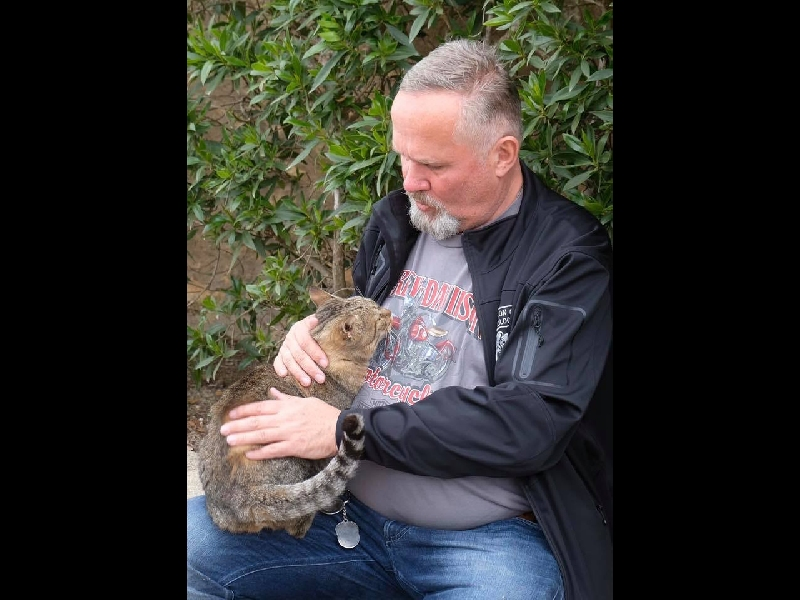 Michael, der Katzenflüsterer